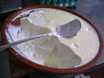 Come si prepara yogurt con yogurtiera