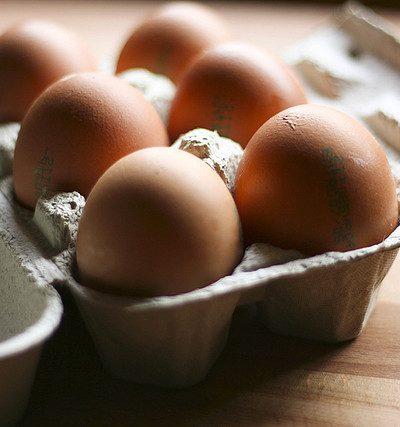 uova crude e salmonella