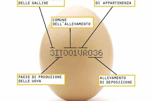 Tracciabilità delle uova