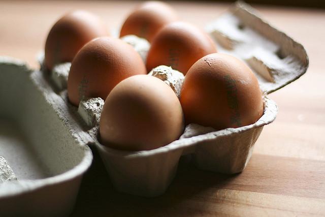 uova e salmonella