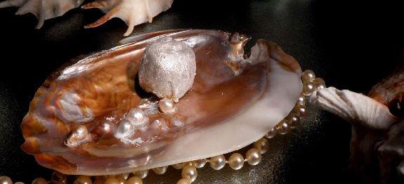 La perla del mare